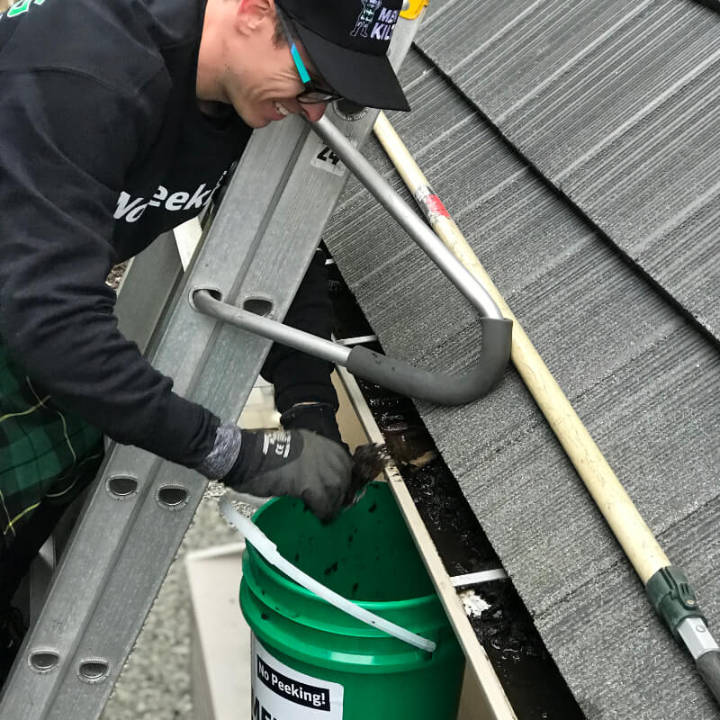 Gutter Cleaning - 004