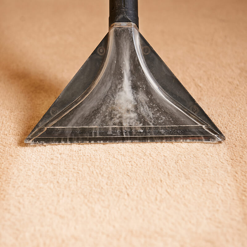 Airdrie Carpet Cleaning